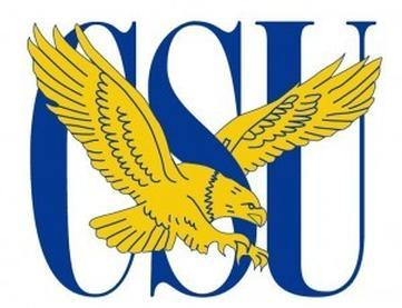 Coppin State Lady Eagles' Defeat of UMES Secures Bye in MEAC Tournament