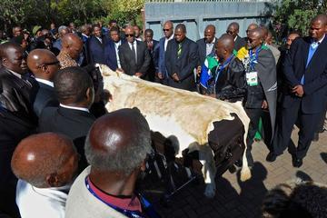 Mandela Makes Final Journey Home in Qunu, S. Africa