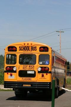 Fines, Points Await School Bus Stop Scofflaws