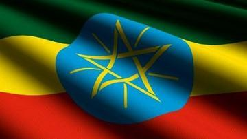 Ethiopian-Torture Suspect Sentenced to 22 Yrs in Prison