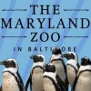 Maryland Zoo Opens Largest Outdoor Penguin Exhibit in North America