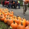 Greenbelt's Pumpkin Walk Festival - Putting our Community into the Community Forest