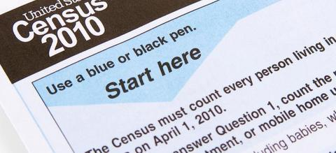 Article31 census