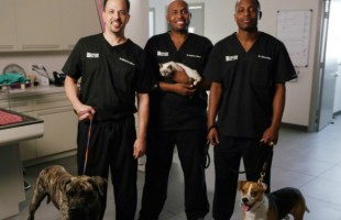 Animal Planet to launch new series about Tuskegee University veterinarians